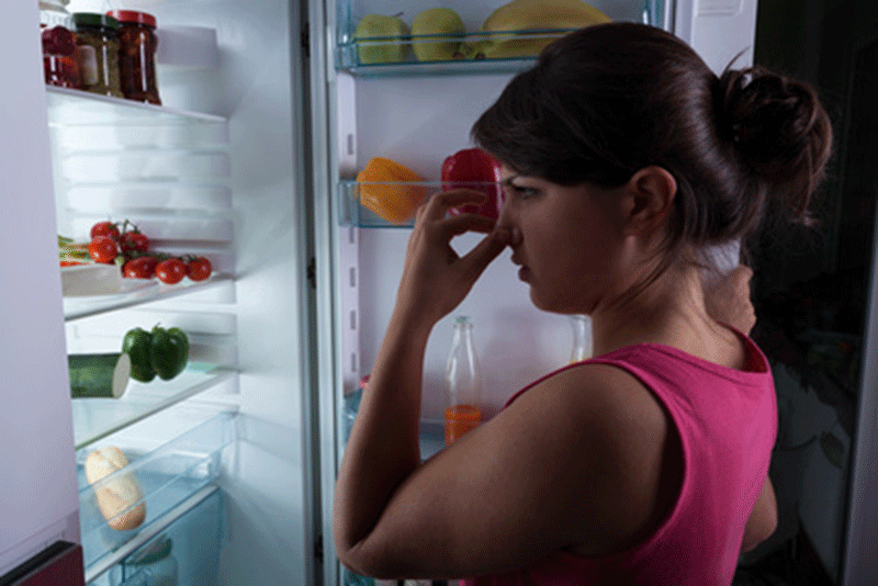 mauvaises odeurs dans le frigo
