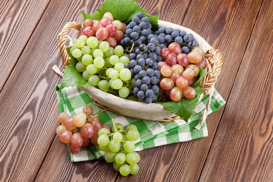 Gut gemocht 7 meilleurs fruits et légumes d'automne et leurs avantages  AH06