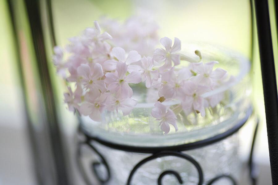 décorer l'intérieur avec des fleurs blanches