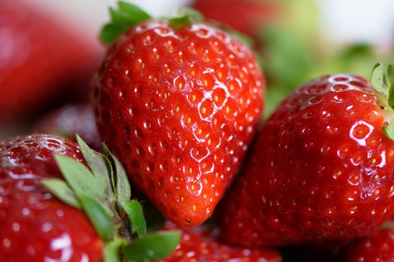 bonne conservation des fraises